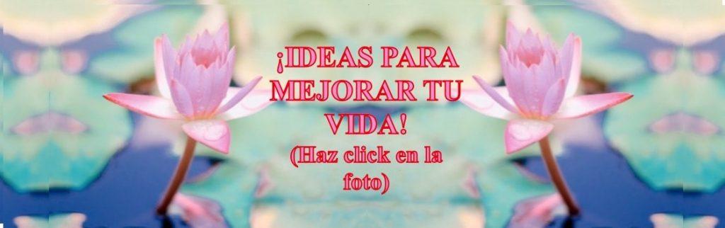 Flor de Loto - nuevo blog - Ideasyoga